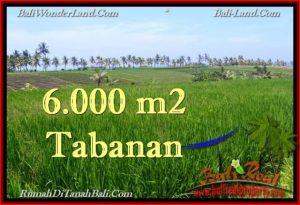 FOR SALE Affordable 6,000 m2 LAND IN TABANAN TJTB267