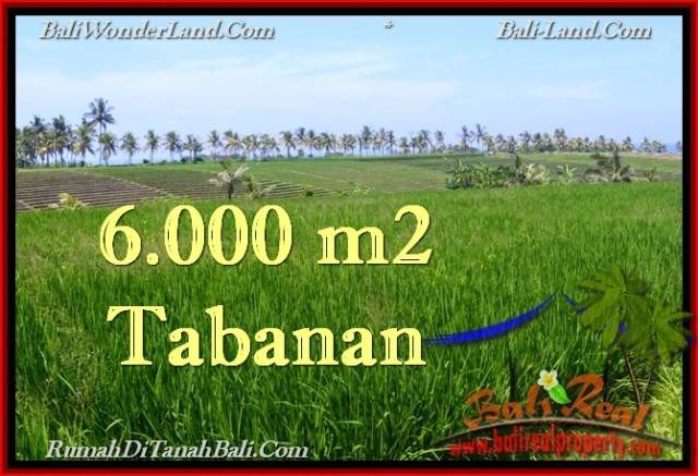 Magnificent PROPERTY LAND IN TABANAN FOR SALE TJTB267