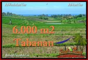 Exotic 6,000 m2 LAND FOR SALE IN TABANAN BALI TJTB268