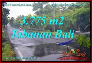 Exotic Tabanan Selemadeg BALI LAND FOR SALE TJTB271