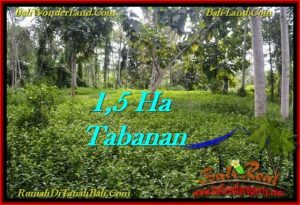 Exotic PROPERTY LAND FOR SALE IN TABANAN TJTB272