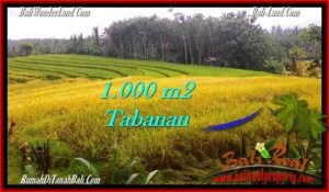 Magnificent PROPERTY LAND IN TABANAN FOR SALE TJTB273