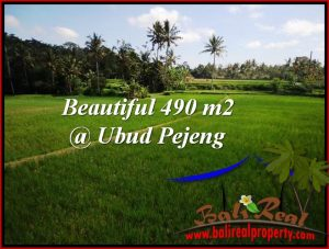 Magnificent PROPERTY LAND FOR SALE IN UBUD BALI TJUB512