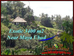 UBUD BALI 3,400 m2 LAND FOR SALE TJUB514