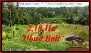 Affordable PROPERTY 21,800 m2 LAND FOR SALE IN Sentral Ubud TJUB546