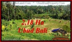 Affordable PROPERTY 21,800 m2 LAND FOR SALE IN Sentral Ubud TJUB546