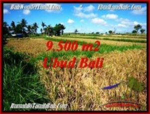 Magnificent PROPERTY 9,500 m2 LAND FOR SALE IN Sentral Ubud BALI TJUB548