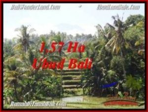 Exotic PROPERTY 15,700 m2 LAND IN Sentral Ubud FOR SALE TJUB549