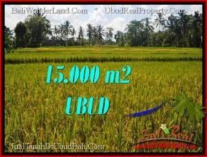 Exotic UBUD BALI 15,000 m2 LAND FOR SALE TJUB551