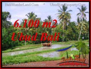 Beautiful 6,100 m2 LAND SALE IN UBUD BALI TJUB552