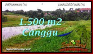 Beautiful LAND SALE IN Canggu Batu Bolong BALI TJCG198
