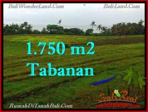 Magnificent LAND SALE IN Tabanan Selemadeg BALI TJTB262