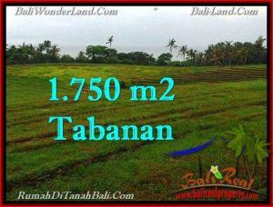 Magnificent LAND SALE IN Tabanan Selemadeg BALI TJTB262