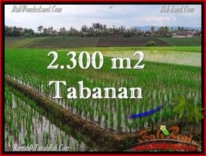 Exotic PROPERTY LAND FOR SALE IN TABANAN TJTB263