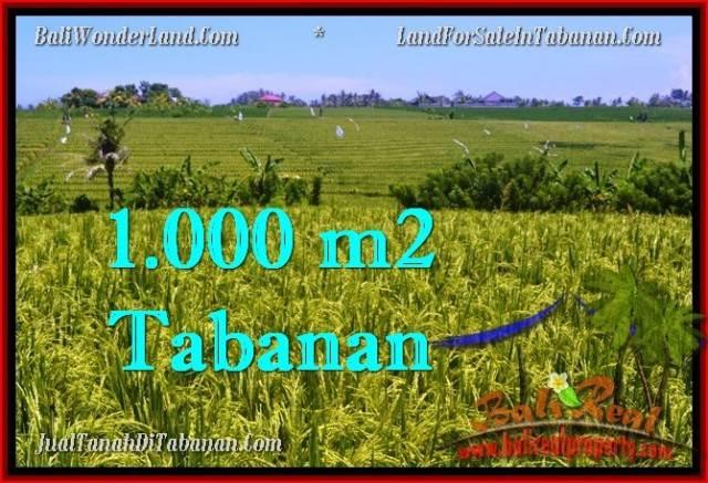 Exotic PROPERTY LAND FOR SALE IN TABANAN TJTB266