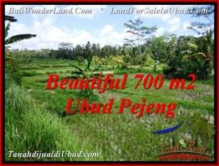 FOR SALE Magnificent LAND IN Ubud Pejeng BALI TJUB534