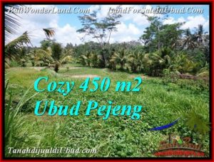 Beautiful PROPERTY LAND SALE IN UBUD TJUB535