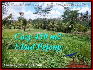 Beautiful PROPERTY LAND SALE IN UBUD TJUB535