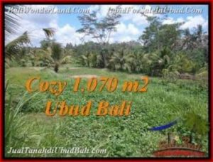FOR SALE 1,070 m2 LAND IN UBUD TJUB536