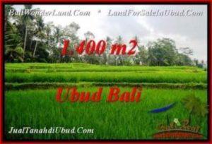 Exotic UBUD BALI 1,400 m2 LAND FOR SALE TJUB539
