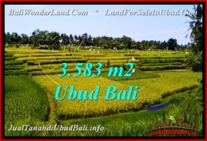 Beautiful 3,583 m2 LAND FOR SALE IN Ubud Pejeng TJUB542