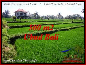 FOR SALE Exotic LAND IN Sentral Ubud BALI TJUB543