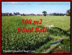 FOR SALE Beautiful LAND IN Sentral Ubud BALI TJUB545