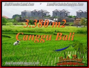 Beautiful 3,380 m2 LAND FOR SALE IN CANGGU BALI TJCG199