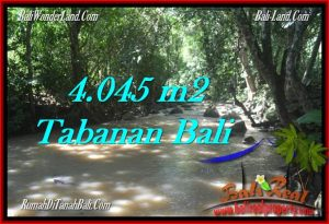Beautiful PROPERTY 4,045 m2 LAND IN Tabanan Selemadeg FOR SALE TJTB277