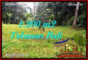 Magnificent 1,200 m2 LAND FOR SALE IN TABANAN BALI TJTB278