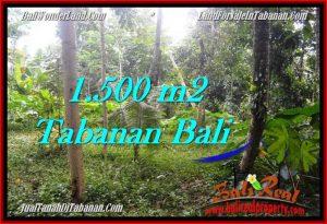 Affordable Tabanan Penebel BALI LAND FOR SALE TJTB279