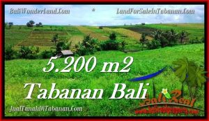 Magnificent PROPERTY TABANAN LAND FOR SALE TJTB281