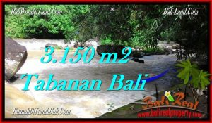 Affordable 3,150 m2 LAND IN TABANAN BALI FOR SALE TJTB282