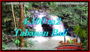 Exotic PROPERTY 4,500 m2 LAND FOR SALE IN Tabanan Selemadeg TJTB283