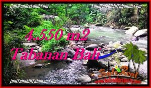 Exotic Tabanan Penebel BALI LAND FOR SALE TJTB284