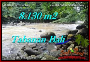 FOR SALE Magnificent LAND IN Tabanan Selemadeg BALI TJTB285
