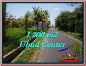 Affordable PROPERTY Sentral Ubud 1,200 m2 LAND FOR SALE TJUB525