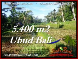 Affordable Ubud Payangan BALI LAND FOR SALE TJUB554