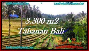 3,300 m2 LAND IN TABANAN BALI FOR SALE TJTB274