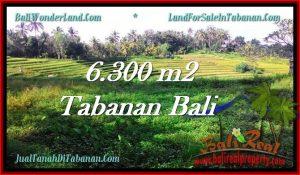 Affordable PROPERTY LAND FOR SALE IN TABANAN TJTB275