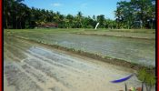 Beautiful PROPERTY LAND FOR SALE IN UBUD BALI TJUB544