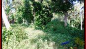 Affordable PROPERTY 500 m2 LAND IN Sentral Ubud FOR SALE TJUB545