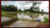 LAND IN Ubud Pejeng BALI FOR SALE TJUB547