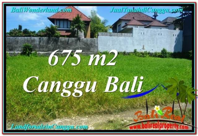 Affordable LAND SALE IN Canggu Brawa TJCG200
