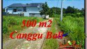 Magnificent 500 m2 LAND SALE IN CANGGU TJCG201