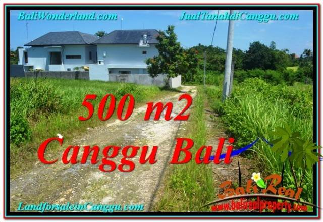 Affordable 500 m2 LAND SALE IN Canggu Brawa TJCG201
