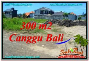 FOR SALE Exotic LAND IN Canggu Brawa TJCG203