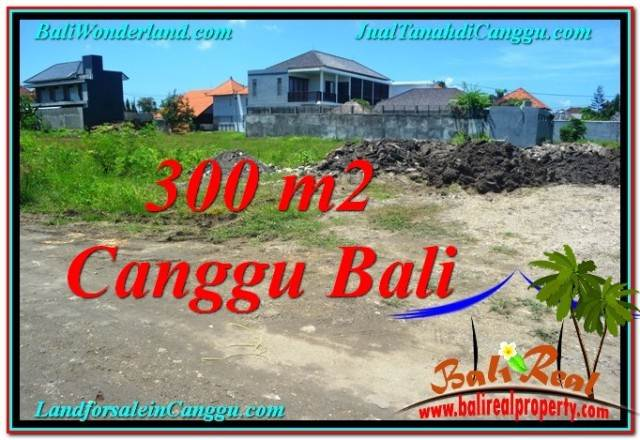 Beautiful LAND SALE IN CANGGU BALI TJCG203