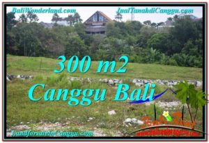 Canggu Umalas LAND FOR SALE TJCG205