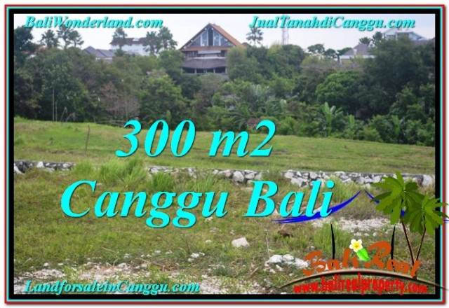 Canggu Umalas 300 m2 LAND FOR SALE TJCG205